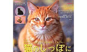 猫生活11月号